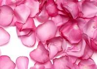 Farbwirkung rosa