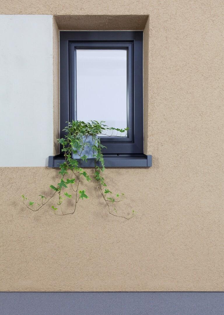 Betonoptik mit Putz an der Wand selber erstellen